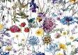 LIBERTYリバティプリント・国産タナローン生地(エターナル)<Wild Flowers>(ワイルド・フラワーズ)3634251AE リバティ 生地