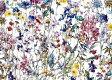 LIBERTYリバティプリント・国産つや消しラミネート(ビニールコーティング生地)<Wild Flowers>(ワイルド・フラワーズ)MATLAMI3634251-14A