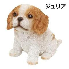 チアフルフレンズ キャバリア ジュリア 100388902 犬 いぬ イヌ dog ドッグ ドック 置物 小物 オブジェ[メルシープレゼント 「雑貨屋」]