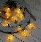 レスイヴェール LEDライト パイナップル 10球 照明 ランプ LED マルチカラー イルミネーション おしゃれ クリスマス ツリー LED かわいい デコレーション オーナメント 飾りつけ