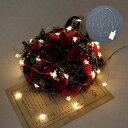 USBフラッシュライト リトルスター 30球 USB接続式 乾電池 USB 400883902 照明 ランプ ホワイト イルミネーション おしゃれ クリスマス ツリー かわい