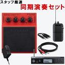 【送料無料】同期演奏に WAV再生パッド Roland SPD-1W + SHURE ワイヤレスインイヤーモニター