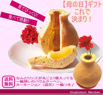 For strawberry sauce Baumkuchen at Carnation artificial flower with