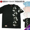 和柄 クールドライ 冷感 Tシャツ「手描き友禅 桜」親子ペア