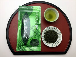 美濃白川茶煎茶白川緑の葉