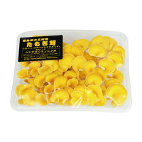 生タモギ茸1箱(約140〜150g入×2パック)