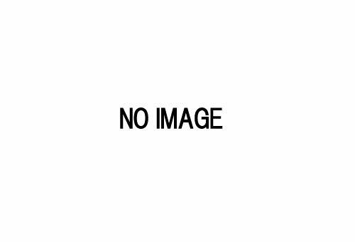 ※新製品 3月発売※ザ・トラックコレクション第10弾【トミーテック・285366】「鉄道模型 Nゲージ TOMYTEC」