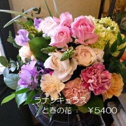 【送料無料】春限定アレンジ優しい花びらラナンキュラスも入っています【あす楽対応_関東】【あす楽対応_近畿】