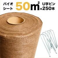 50平米分セットバイオシートクラピア植栽用(50m2)+J字型ピンのセット(250本)1m幅50m巻土に還るシート防草シートアンカーピン