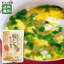 【メール便送料無料】トーノー たっぷりねぎの鶏だし生姜スープ 10食入り