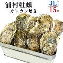 三重県産・的矢産牡蠣