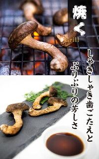 松太郎すき焼き