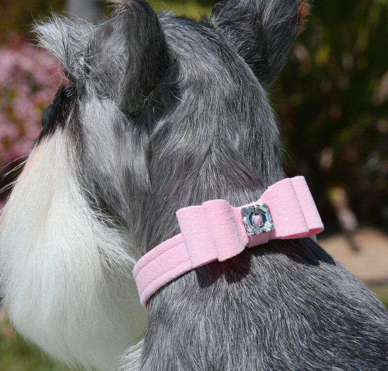 ★Susan Lanci★スーザンランシーBig Bow Collar犬用スワロフスキ付き首輪アメジスト