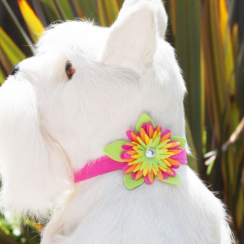 ★Susan Lanci★スーザンランシーIsland Flower Collar犬用スワロフスキ付き首輪パーフェクトピンク