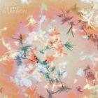 輸入盤 BIBIO / SILVER WILKINSON (DIG) [CD]