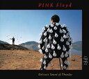 輸入盤 PINK FLOYD / DELICATE SOUND OF THUNDER (LIVE) [2CD]