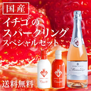 スパークリングワイン ミガキイチゴ・ムスー ミガキイチゴ・カネット スペシャル メッセージ キャンプ グランピング