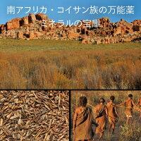 南アフリカ・コイサン族の万能薬、ミネラルの宝庫