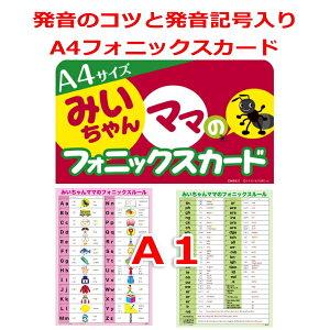 教師用大判A4フォニックスフラッシュカードとA1フォニックス一覧表(発音記号入)