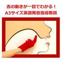 【みいちゃんママのなんじゃもんじゃボード】舌の動きは指で教え
