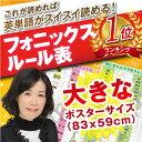 【送料無料】フォニックスポスター(発音記号入)英語アルファベットポスター【みいちゃんママのフォ…