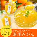 愛媛産柑橘寒天ゼリーみかん寒天ゼリー170g×12本送料無料