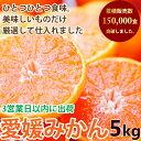 みかん 5kg 訳あり 送料無料 ブランド 愛媛県西宇和地区...
