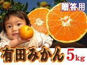 和歌山県有田で創業120年以上のみかん農家から最高級品質の有田みかんをお届け!◆ギフト用に大...