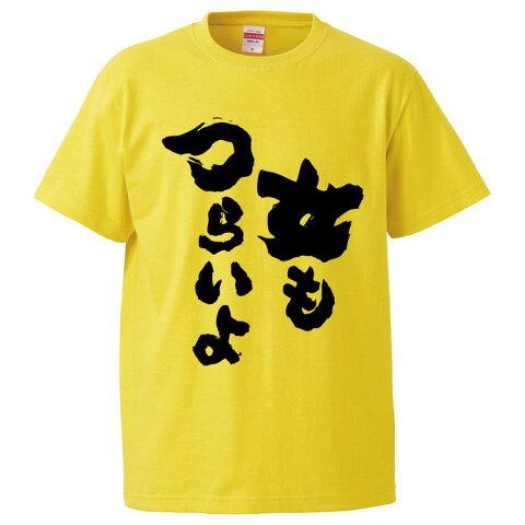 おもしろTシャツ 女もつらいよ ギフト プレゼント 面白 メンズ 半袖 無地 漢字 雑貨 名言 パロディ 文字