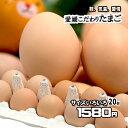 たまご 愛媛県産 卵 鶏卵 濃厚 こだわり製法 20個 サイズ不揃い 送料無料