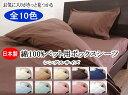 【送料無料】日本製 綿100%(コットンUSA)防縮加工 カラーベット...