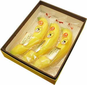 【最高級ペンギン印バナナ3本】フィリピンのアポ山で栽培された最高級高原栽培バナナ