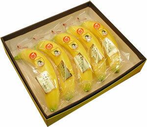 【最高級ペンギン印バナナ5本】フィリピンのアポ山で栽培された最高級高原栽培バナナ