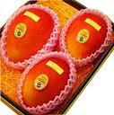 《大玉》【宮崎産特選マンゴー3玉】国産マンゴーの上品で濃厚な甘さ、トロピカルな味わいをお楽しみ頂けます!