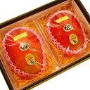 《大玉》【宮崎産太陽のタマゴ2玉】宮崎マンゴーの最高峰!上品で濃厚な甘さ、トロピカルな味わいをお楽しみ頂けます!