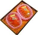 《中玉》【宮崎産太陽のタマゴ2玉】宮崎マンゴーの最高峰!上品で濃厚な甘さ、トロピカルな味わいをお楽しみ頂けます!