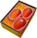 《中玉》【宮崎産太陽のタマゴ3玉】宮崎マンゴーの最高峰!上品で濃厚な甘さ、トロピカルな味わいをお楽しみ頂けます!