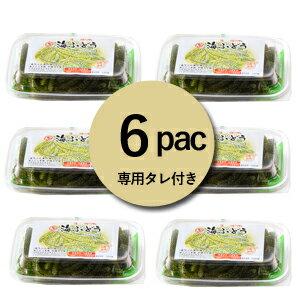 【生】海ぶどう100g×6パックセットお取り寄せグルメおつまみ沖縄お土産