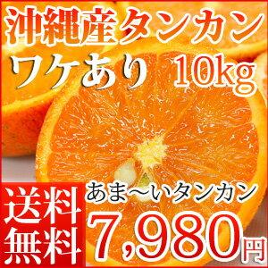 沖縄産訳ありタンカン【5kg】【お届け日指定不可】