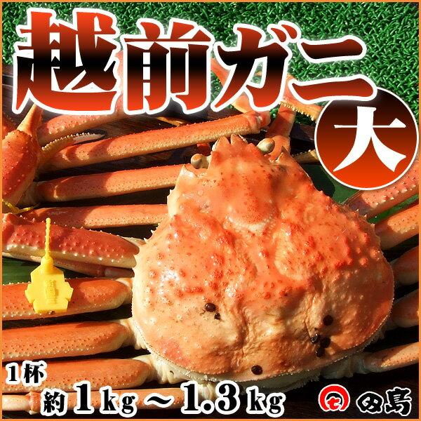 福井県産 越前がに 1.3kg前後