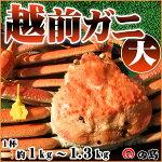 越前ガニ(大)福井県産越前がに・蟹約1kg〜1.3kg×1杯【ずわいがに・蟹】