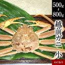 わけありガニ(小)福井県産越前かに(訳あり越前ガニ・足折れ蟹)1杯 約500g〜800g【ずわいがに・蟹】[冷蔵]