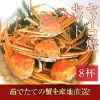 【11/6解禁!】せいこがに福井県産せいこ蟹(セイコガニ) 8杯 [冷蔵]