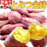 福井県産地直送とみつ金時送料無料5kg(とみつきんとき)生芋