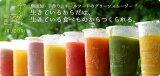 【/お醫者さんの奧さんが飲むホールフードの野菜ジュース/選べる10本セット】野菜まるごと繊維たっぷり★身體に染み込むイルドゥリジュースクレンズダイエットとして利用される方が増えています。