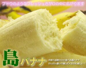 なぜか田舎を感じさせてくれる、島バナナ。一度だけでいいから食べて欲しい。なぜなら、1年に1...