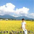 ミルキープリンセス 岡山県産【西日本】28年新米10kg 自家生産米【送料無料】ミルキークイーンの姉妹米