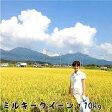 ミルキークイーン 平成28年 自家生産米 岡山産【西日本】10kg【送料無料】