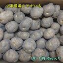 北海道産じゃがいも 約10kg まとめ買いセット ご家庭用 男爵 馬鈴薯 LM〜Lサイズ 送料無料 国産 自宅用