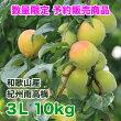 【送料無料】紀州みなべの南高梅3L10kg